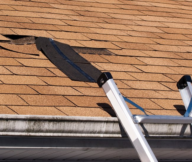 Roof shingles that are <strong>missing</strong>? image
