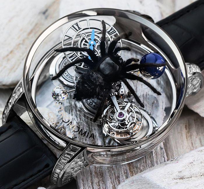 Astronomia Spider