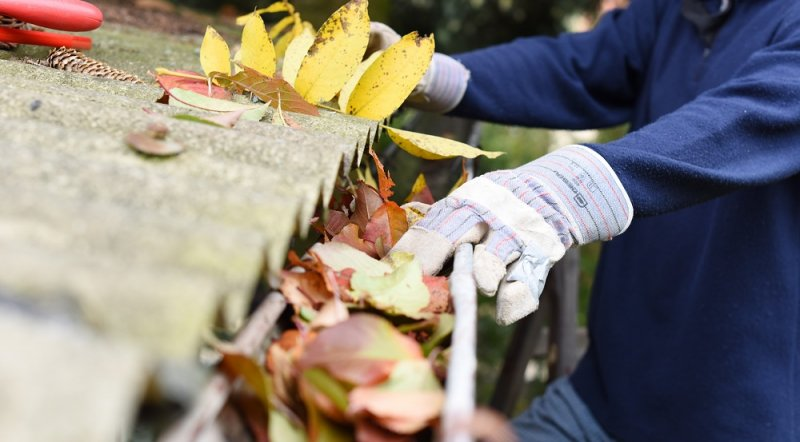 Signs It's Time to Replace Your Gutters image