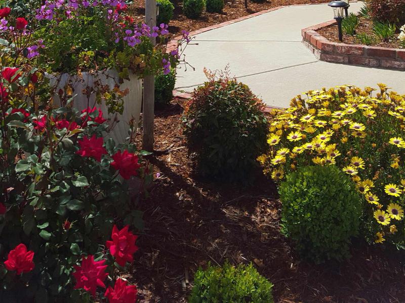 Armstrong Garden Centers Temecula Riverside County Ca Armstrong Garden Centers
