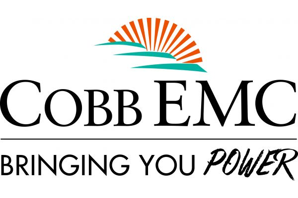 Cobb EMC Community Foundation image