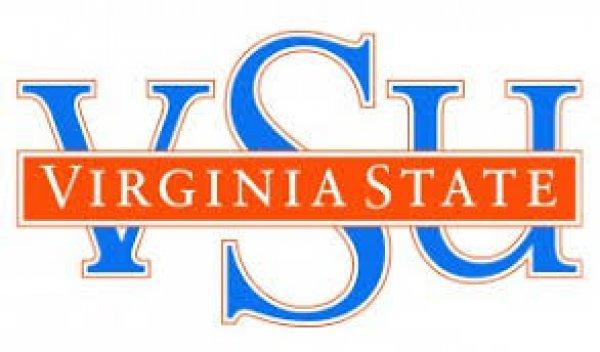 Virginia State Public Sector logo