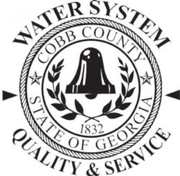 Cobb County Public Sector logo