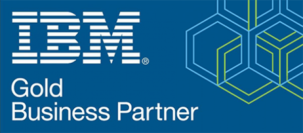 IBM Our Partners  logo
