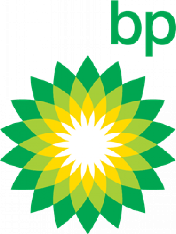 BP Chemicals and Petroleum logo