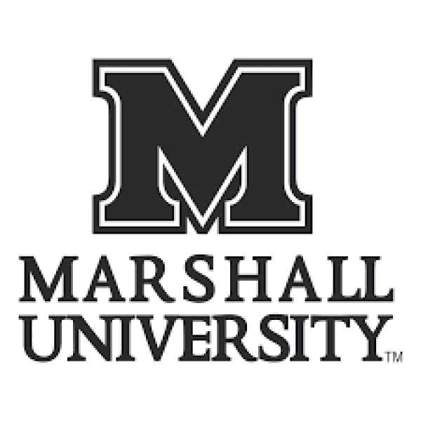 Marshall Public Sector logo