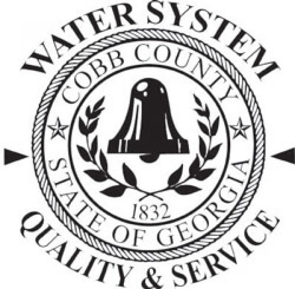 Cobb County Public Sector logo