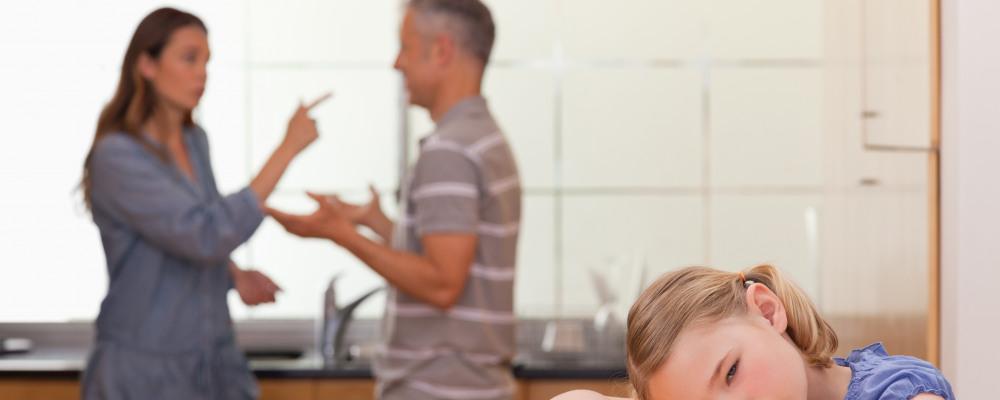 Georgia child support deviations Parenting Time – Georgia Child Support Worksheet