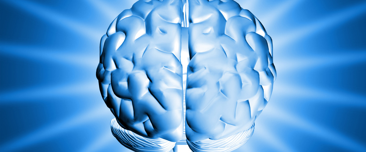 Glucose and Brain Function