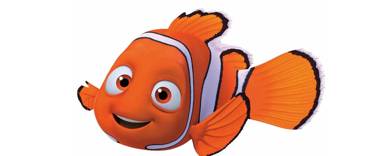 Carpe Diem or Fish of the Day