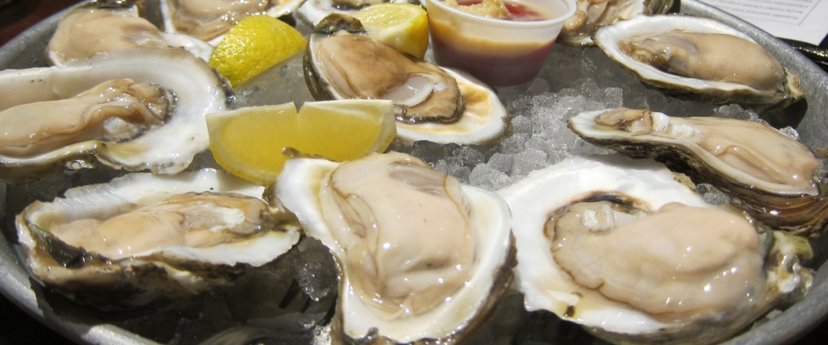 Make Your Way Down the Oyster Trail