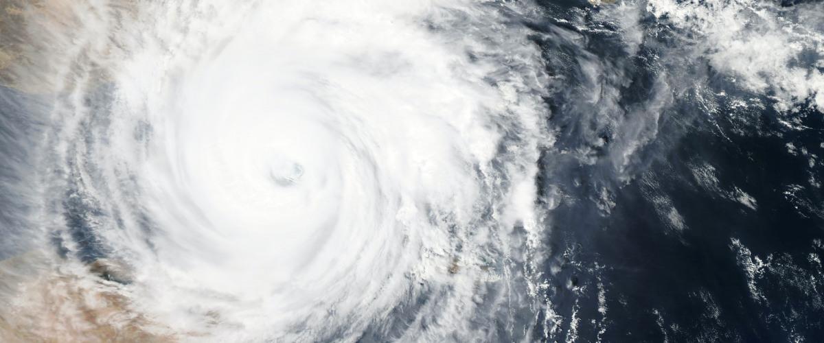 """""""Where's David, Mommy?"""" - 16th Anniversary of Hurricane Katrina Reflection"""