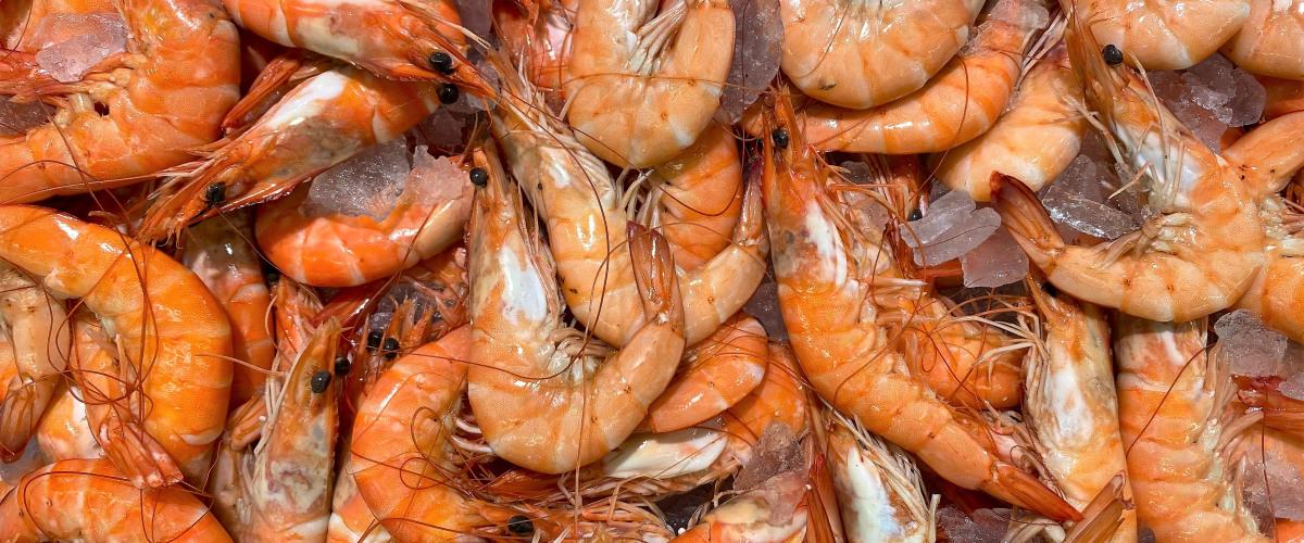 Meet Louisiana?s Seafood King 2020!