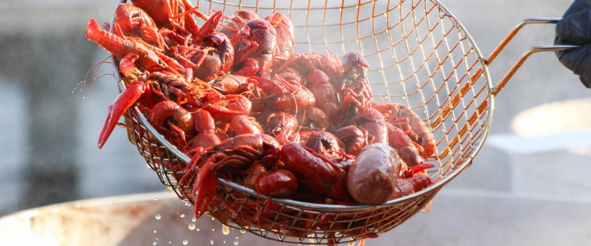 Louisiana Crawfish Industry Hit Hard by Pandemic Regulations