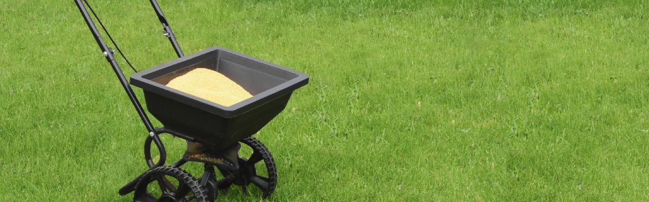 Turf Fertilization & Weed Control