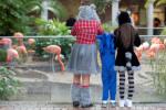 Peek-a-Boo at the Zoo Bringing Halloween Fun to Audubon Zoo