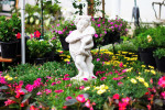 Stop and Smell the Flowers: Five Gardens to Visit