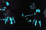 Hunter Cole's Glowing Artwork