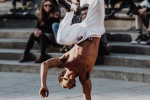 Red Bull Gives You Wings for Your Wingtips: Red Bull Hosts a Regional Qualifier for Dance Competition in New Orleans