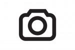 SoFab Unveils Their Green Garden