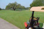 Golfing at Audubon Park Is Coming Back Soon