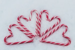 True Stripes: Interesting Facts About Candy Canes