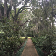 The World's Most Haunted House: The Myrtles Plantation