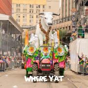 Mardi Gras Revelers 2020