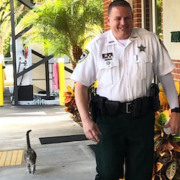 Cat, Missing for 2 Years, Returns to Tampa Family For Christmas
