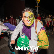 The Intergalactic Krewe of Chewbacchus