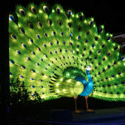 Zoo Lights Is A Feast For The Senses