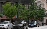 Image of Atlanta Photoshoot