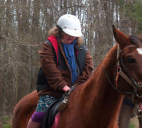 Conservancy for the Arts Therapeutic Riding Program