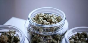 Medicinal Marijuana: Does Smoking Weed Prevent Coronavirus?