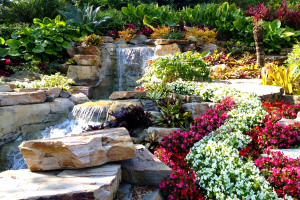 Managing Your Lawn with Xeriscaping