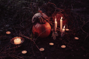 Where to Have a Spooktacular Halloween
