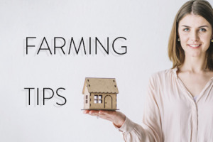 4 Farming Tips for a Modern Audience