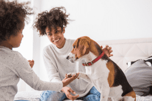 House Shopping with Your Pet