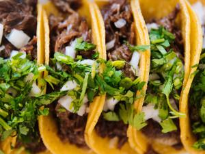 Top Taco to Return in Fall 2021