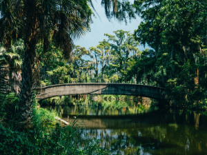 NOLA Named in the Top Five American Cities for Parks