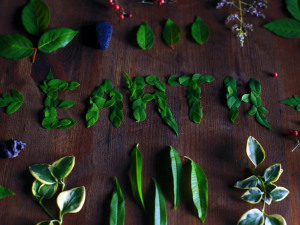 Five Ways to Responsibly Celebrate Earth Day in New Orleans