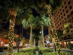 A Look into Christmas Fest