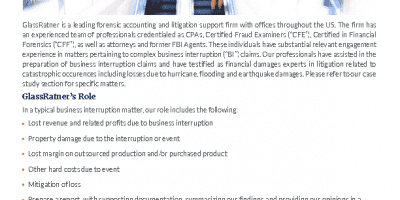 Business Interruptions Claims Services