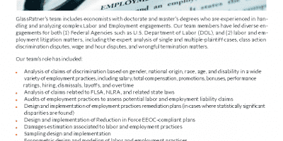 Labor and Employment Capabilities