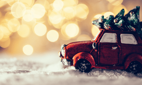 Image for In-Car Holiday Activities
