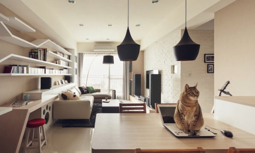 5 Cleaning Tips for Pet Owners