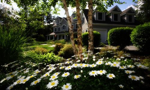 Make Your Home Feel Like New