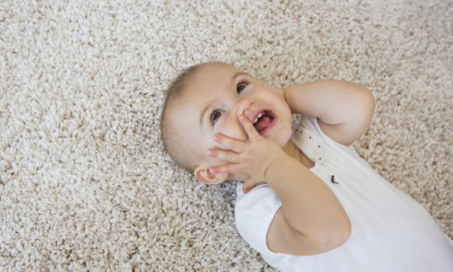 How Often Should You Get Your Carpets Cleaned