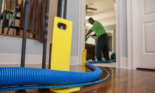 5 Tips Before the Professionals Come In