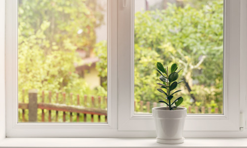 7 Ways to Allergy-Proof Your Home